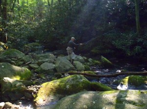 My dad, Paul Rubel, casting among boulders, Rhododendron, and trout waters