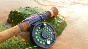 Fly Rod Reel Clouser