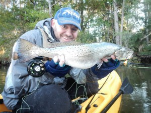 Speckled Trout 23_5